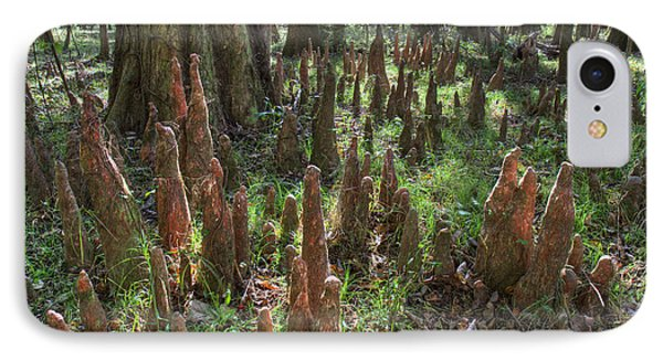 Bald Cypress Knees In Congaree National Park Phone Case by Pierre Leclerc Photography