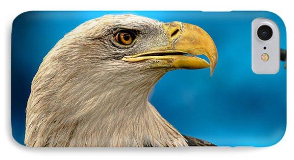 Bald Eagle And Fledgling  Phone Case by Bob Orsillo