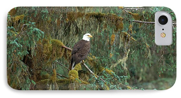 Bald Eagle Phone Case by Art Wolfe