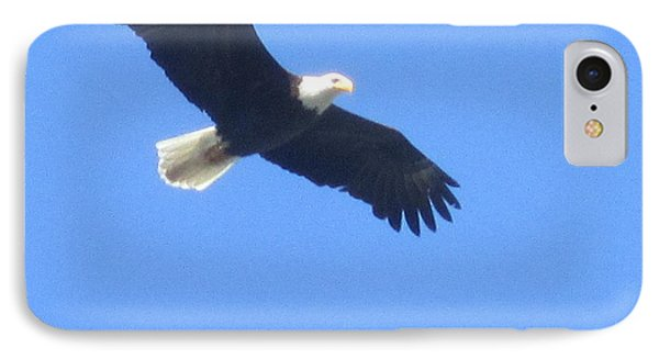 Bald Eagle At Lake Rowena Phone Case by Jeffrey Koss
