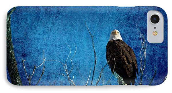 Bald Eagle Blues Into The Night IPhone Case by James BO  Insogna