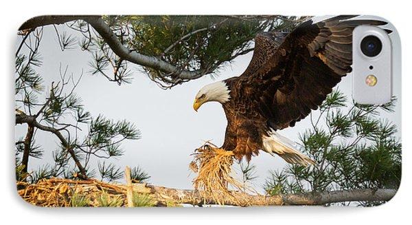 Bald Eagle Building Nest IPhone 7 Case