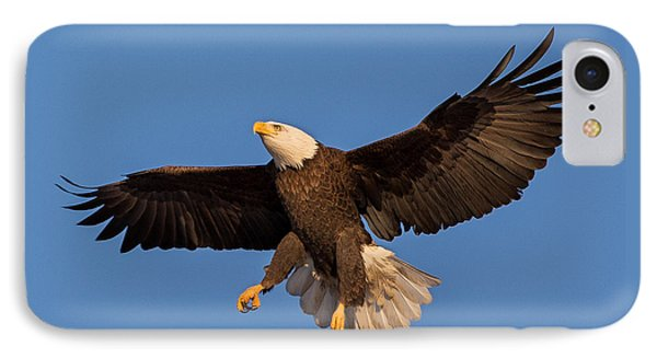 Bald Eagle Christmas Morning IPhone Case