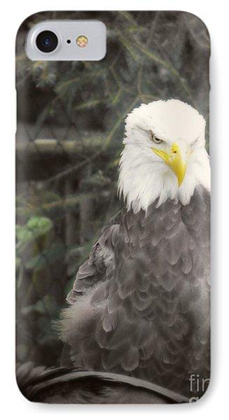 Bald Eagle Phone Case by Dawn Gari