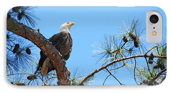 Bald Eagle Phone Case by Geraldine DeBoer