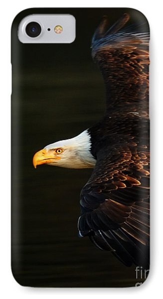 Bald Eagle In Flight Phone Case by Bob Christopher