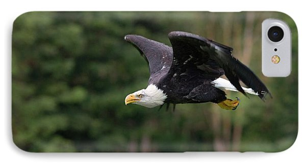 Bald Eagle In Flight IPhone Case by Linda Wright