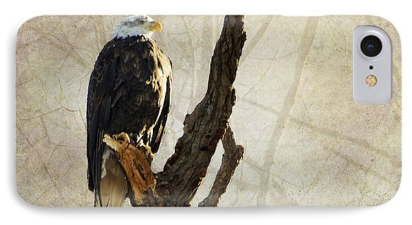 Bald Eagle Keeping Watch In Illinois IPhone Case by Luther Fine Art