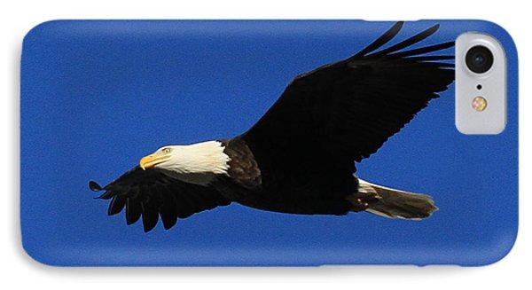 Bald Eagle Lock 14 IPhone Case by Paula Guttilla