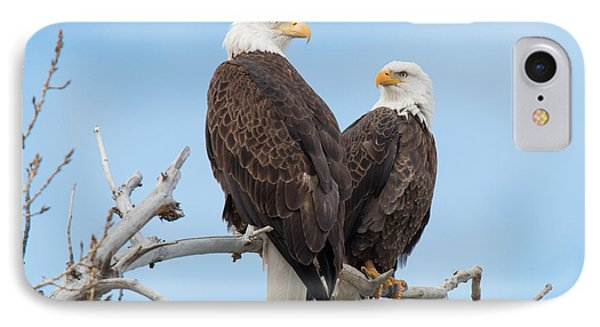 Bald Eagle Mates Form A Heart IPhone Case by Tony Hake