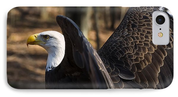 Bald Eagle Preparing For Flight IPhone Case by Chris Flees