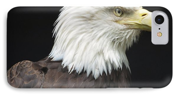 Bald Eagle Profile 2 Phone Case by Richard Bryce and Family
