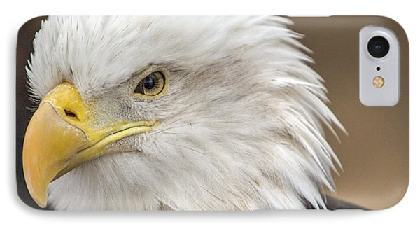 IPhone Case featuring the photograph Bald Eagle by Robert  Aycock