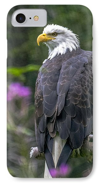 Bald Eagle IPhone Case by Saya Studios