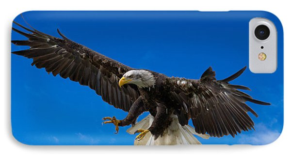 Bald Eagle IPhone Case by Scott Carruthers