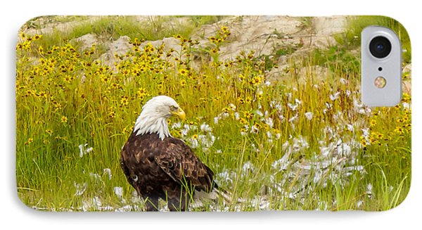 Bald Eagle  IPhone Case by Trace Kittrell