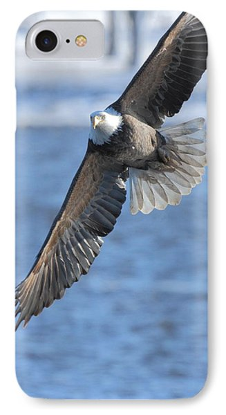 Bald Eagle Turn IPhone Case by Coby Cooper