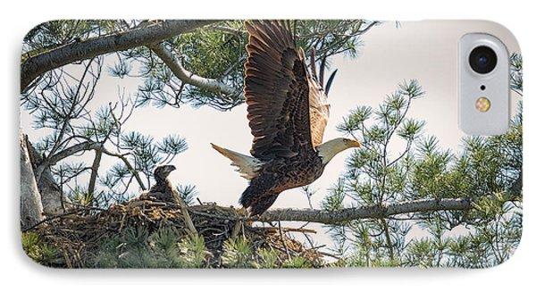 Bald Eagle With Eaglet Phone Case by Everet Regal