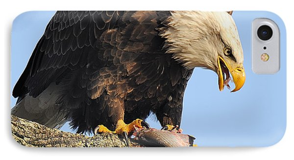 Bald Eagle With Fish Phone Case by Angel Cher