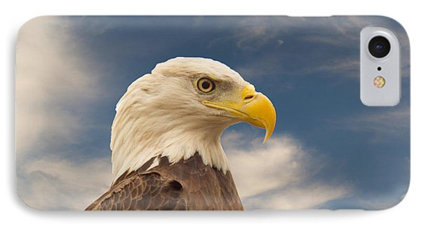 Bald Eagle With Piercing Eyes 1 IPhone Case by Douglas Barnett