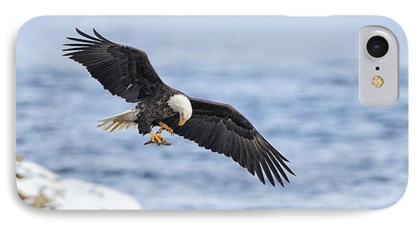 Bald Eagle With Prey Phone Case by Daniel Behm
