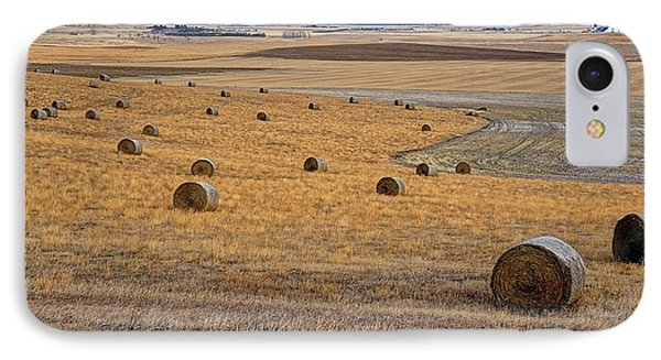Bales Of Hay IPhone Case