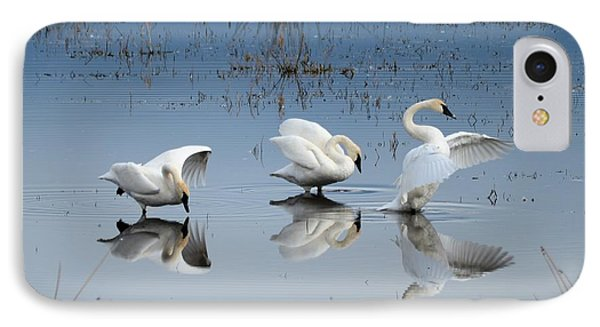 Dance Of The Trumpeters IPhone Case