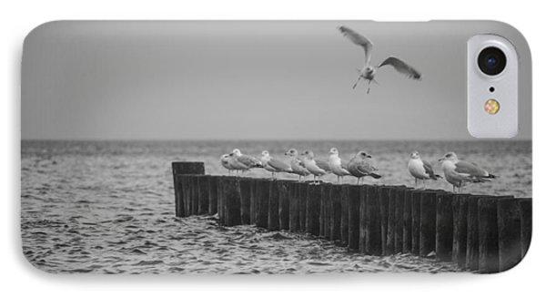 Baltic Sea-gulls IPhone Case by Ralf Kaiser