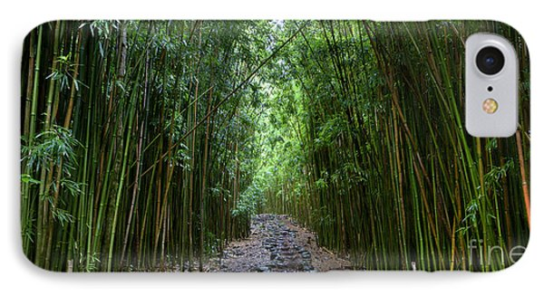 Bamboo Forest Trail Hana Maui IPhone Case by Dustin K Ryan