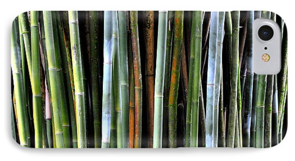 IPhone Case featuring the photograph Bamboo Rainbow by Jodi Terracina