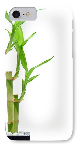 Bamboo Stems In Black Vase Phone Case by Olivier Le Queinec