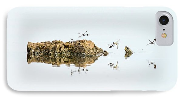 Banded Groundling Dragonfly IPhone Case by Photostock-israel