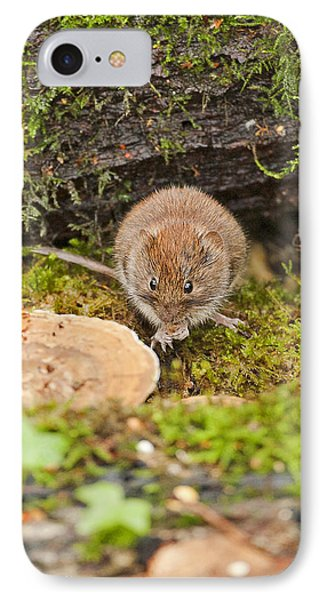 IPhone Case featuring the photograph Bank Vole by Paul Scoullar