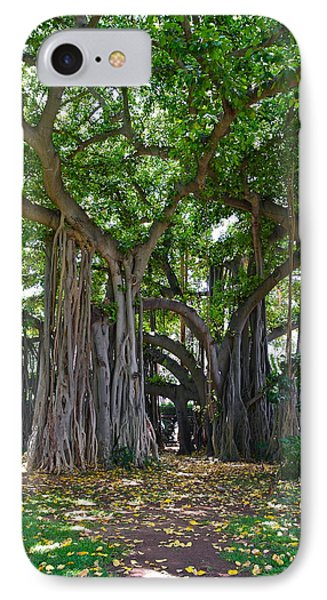 Banyan Tree At Honolulu Zoo IPhone Case by Michele Myers