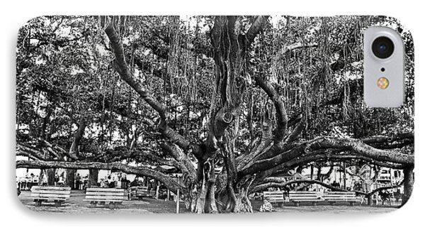 Banyan Tree IPhone Case
