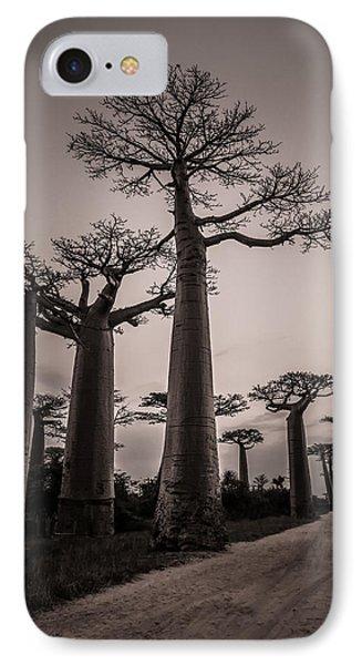 Baobab Avenue IPhone Case by Linda Villers