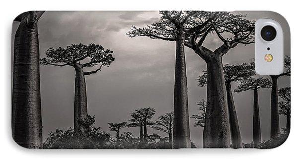 Baobab Highway IPhone Case by Linda Villers