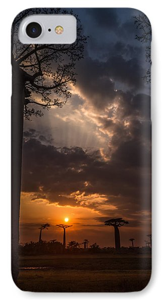 Baobab Sunrays IPhone Case by Linda Villers