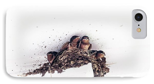 Barh Swallow Chicks In The Nest IPhone Case by Gail Campbell