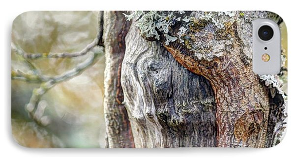Bark And Bokeh Phone Case by Chris Anderson