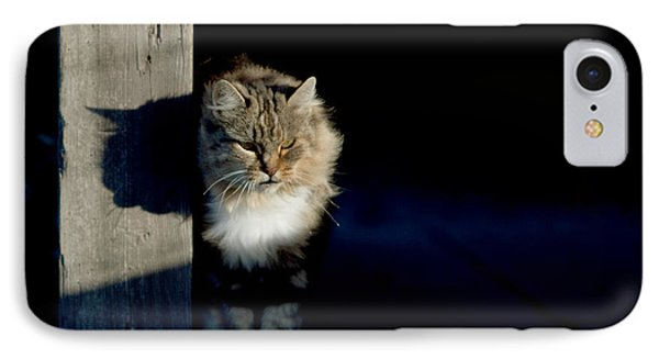 Barn Cat Phone Case by Art Block Collections