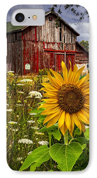 Barn Meadow Flowers IPhone Case by Debra and Dave Vanderlaan