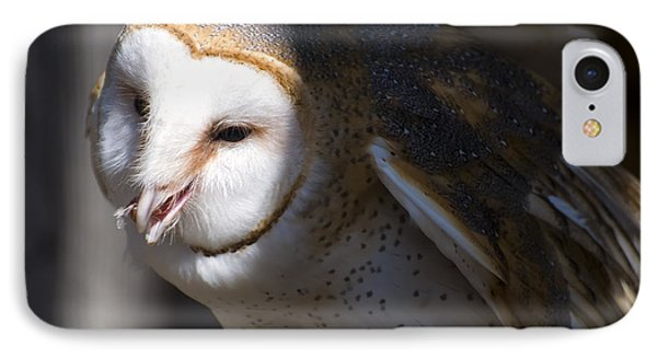 Barn Owl 1 IPhone Case by Chris Flees