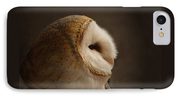Barn Owl 3 IPhone Case