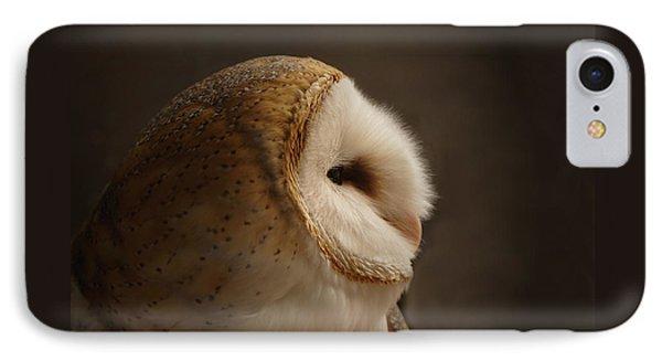 Barn Owl 3 IPhone Case by Ernie Echols