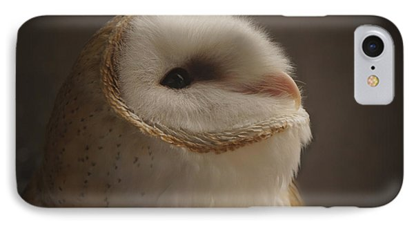 Barn Owl 4 IPhone Case