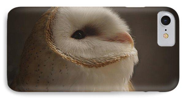 Barn Owl 4 IPhone Case by Ernie Echols