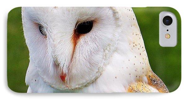 Barn Owl... IPhone Case