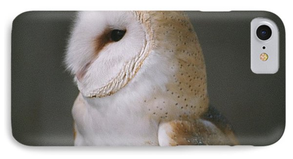 IPhone Case featuring the photograph Barn Owl by David Porteus