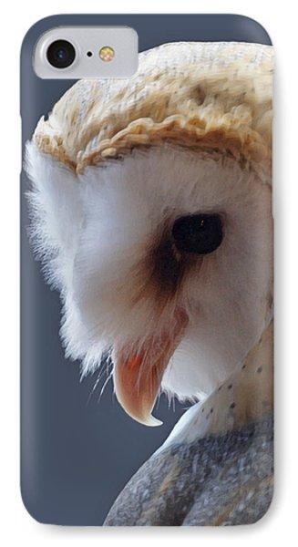 Barn Owl Dry Brushed Phone Case by Ernie Echols
